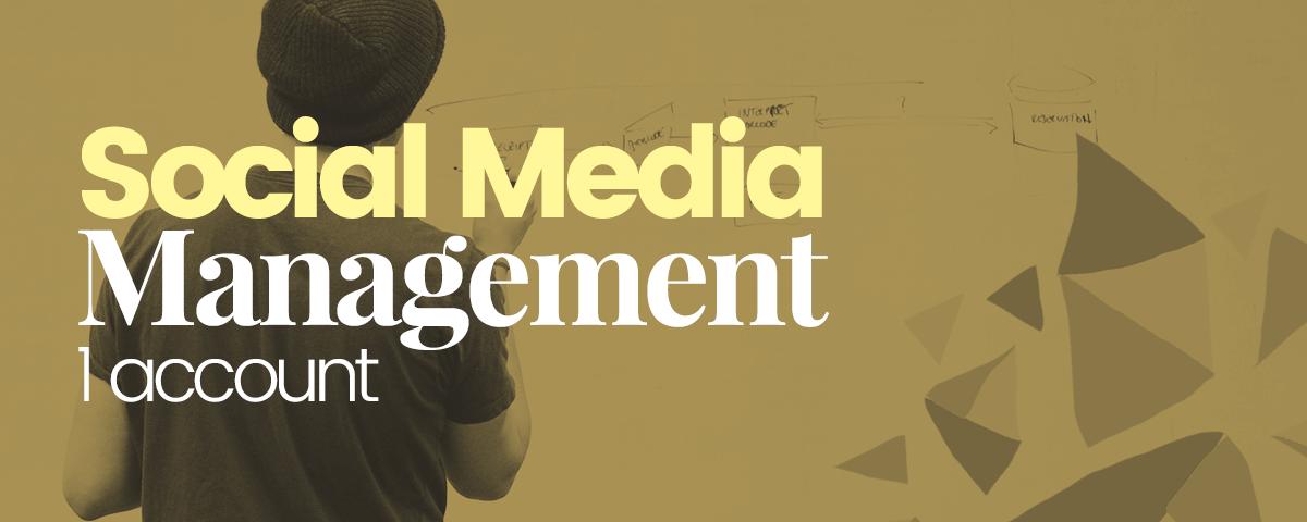 Social-media-management-1-account