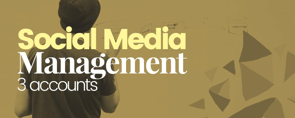 Social-media-management-3-account
