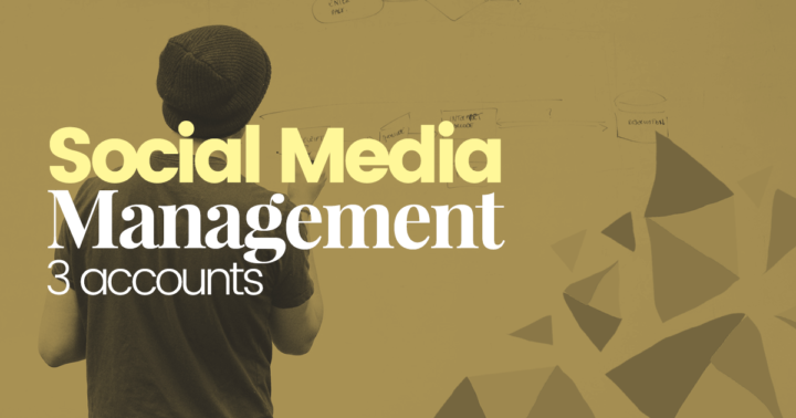 Social-media-management-3-account