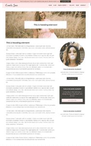 Homepage sample 2