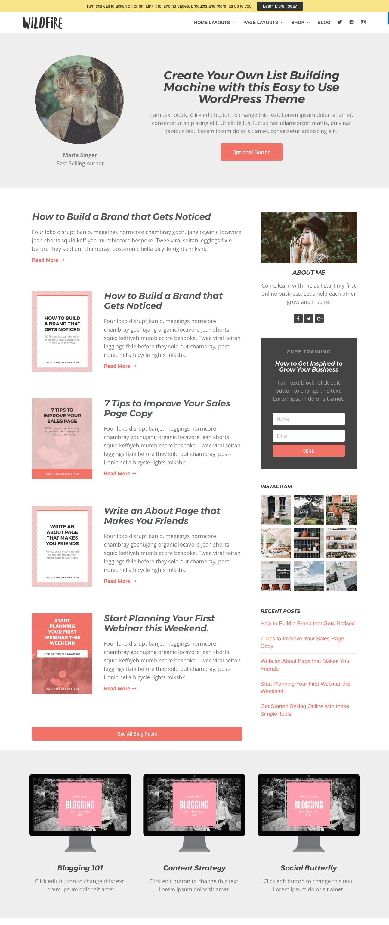 Homepage sample 1